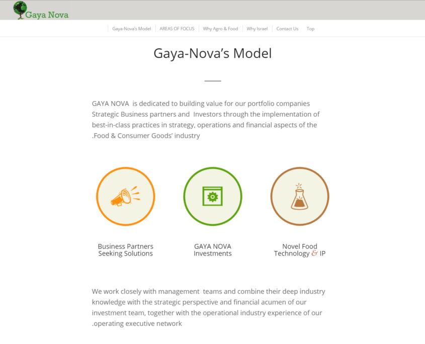 gayanova_model