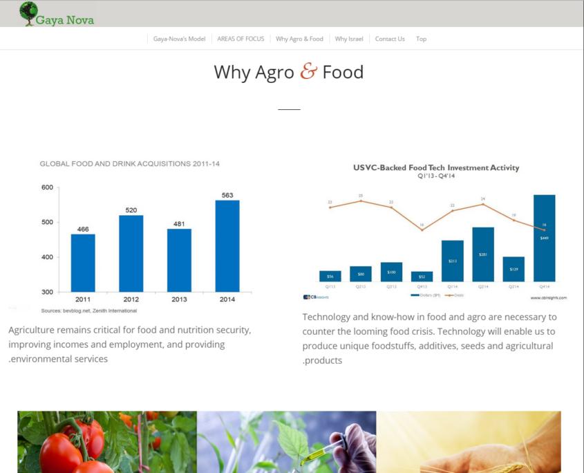 gayanova_why_agro_and_food
