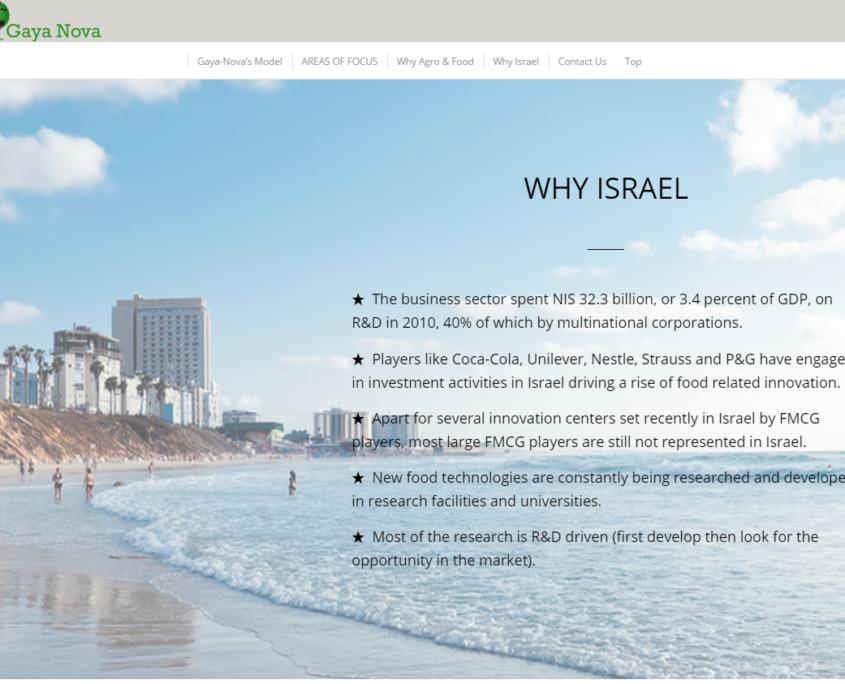 gayanova_why_israel